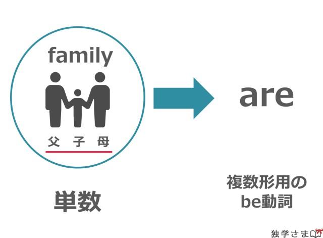familyは単数だが、複数形のareで受けることもある