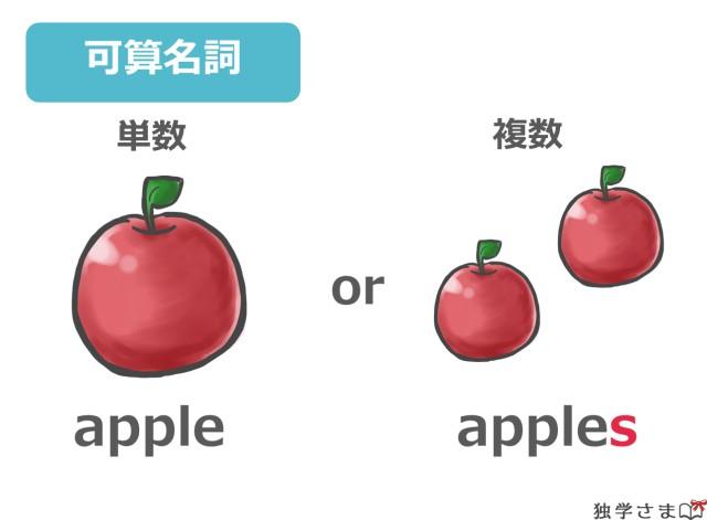 英語の数えられる名詞(可算名詞)は単数と複数で区別される