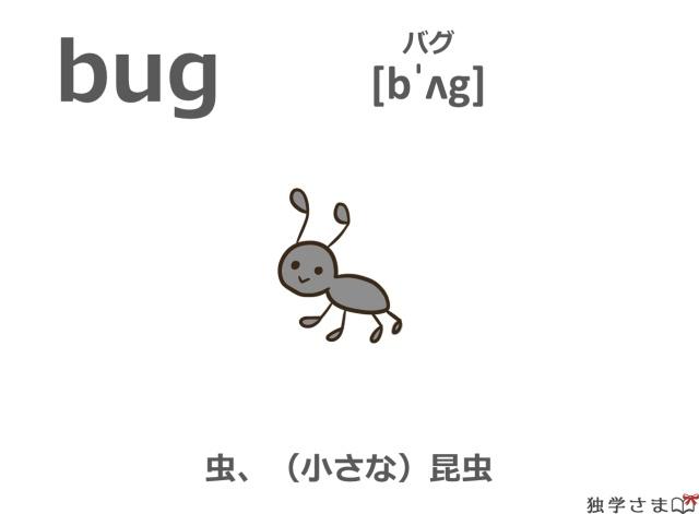 英単語『bug』イラスト・意味