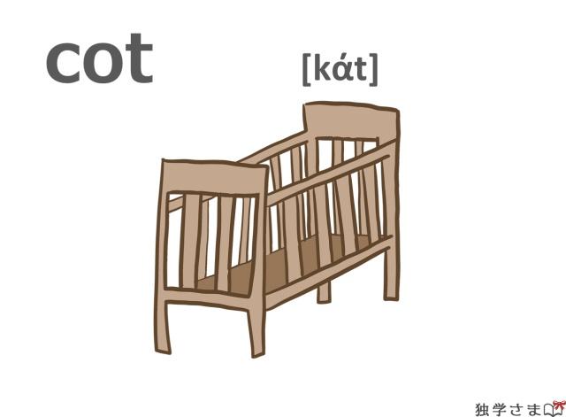 英単語『cot』イラスト