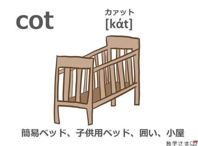 英単語『cot』イラスト・意味