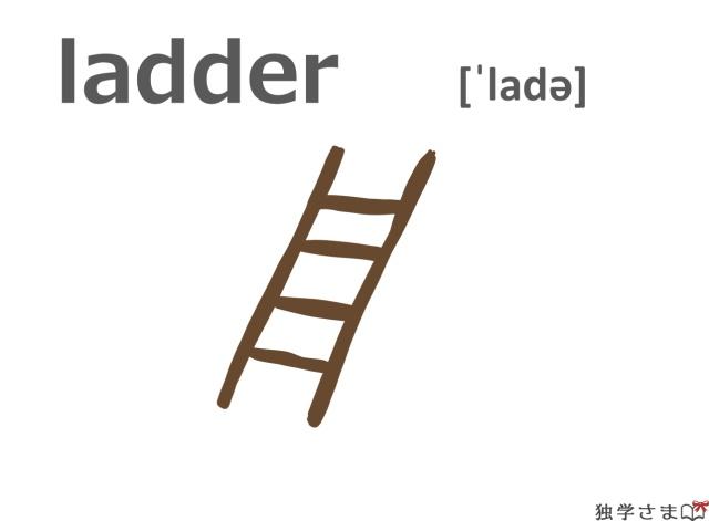 英単語『ladder』イラスト