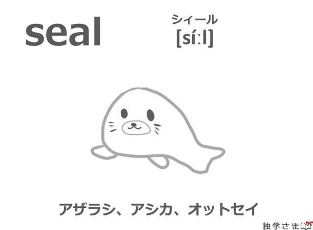英単語『seal』イラスト・意味