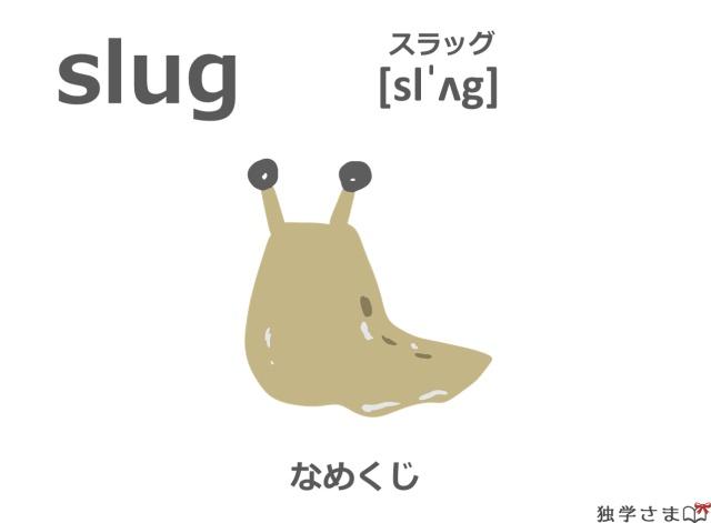 英単語『slug』イラスト・意味