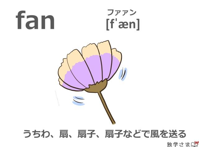 英単語『fan』イラスト・意味