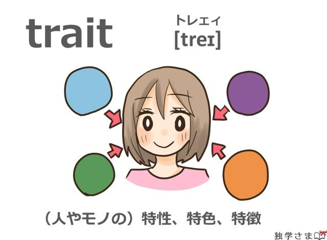 英単語『trait』イラスト・意味
