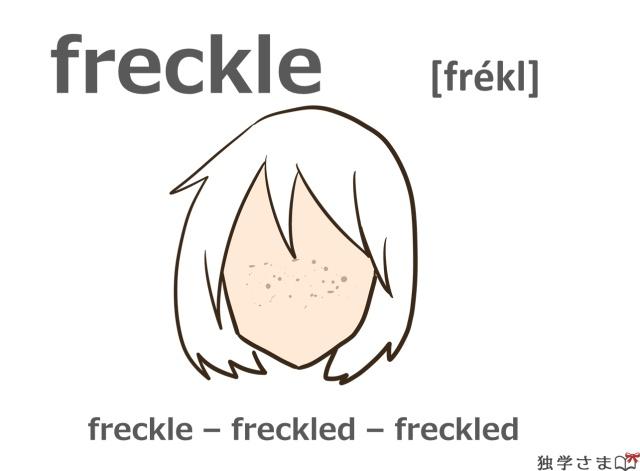 英単語『freckle』イラスト