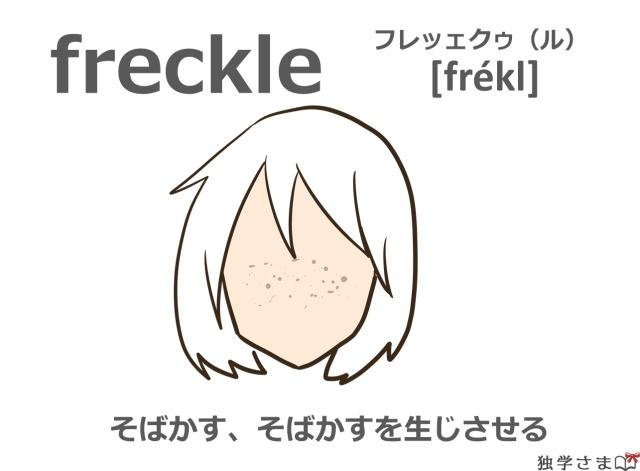 英単語『freckle』イラスト・意味・カタカナ