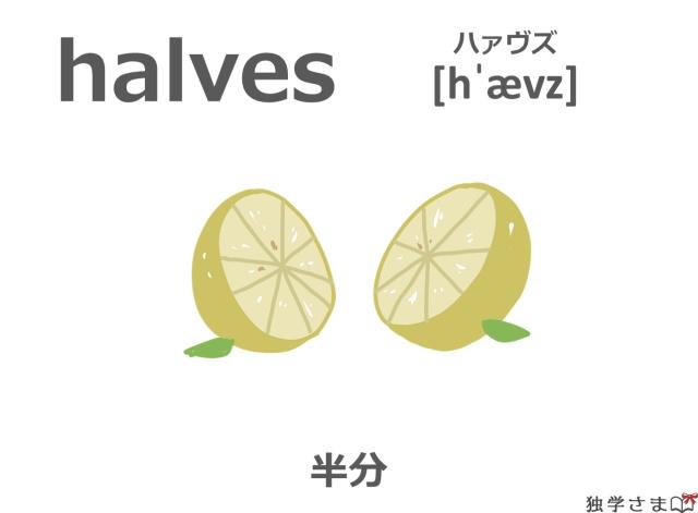 英単語『halves(half)』イラスト・意味・カタカナ