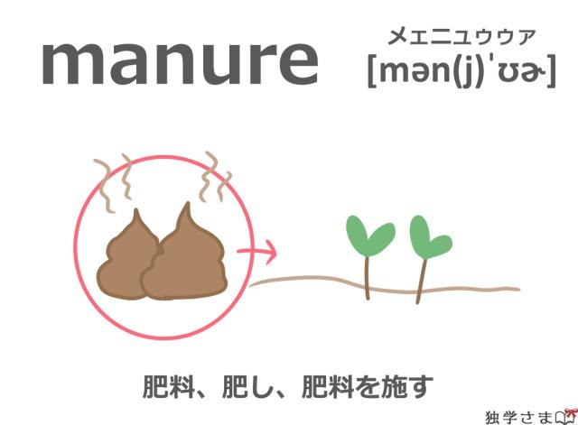 英単語『manure』イラスト・意味・カタカナ