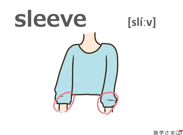 英単語『sleeve』イラスト