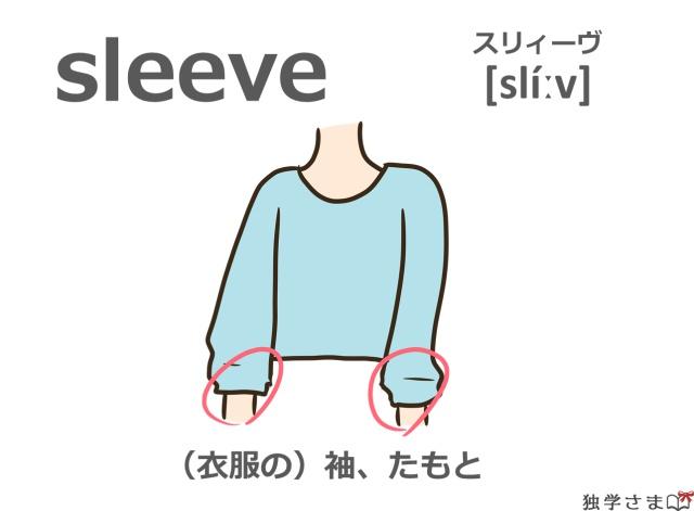 英単語『sleeve』イラスト・意味・カタカナ