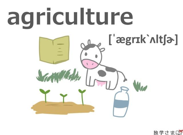英単語『agriculture』イラスト