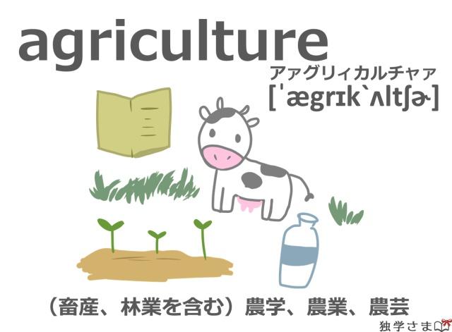 英単語『agriculture』イラスト英単語『agriculture』イラスト・意味・カタカナ