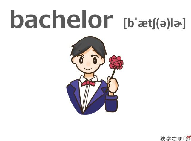 英単語『bachelor』イラスト