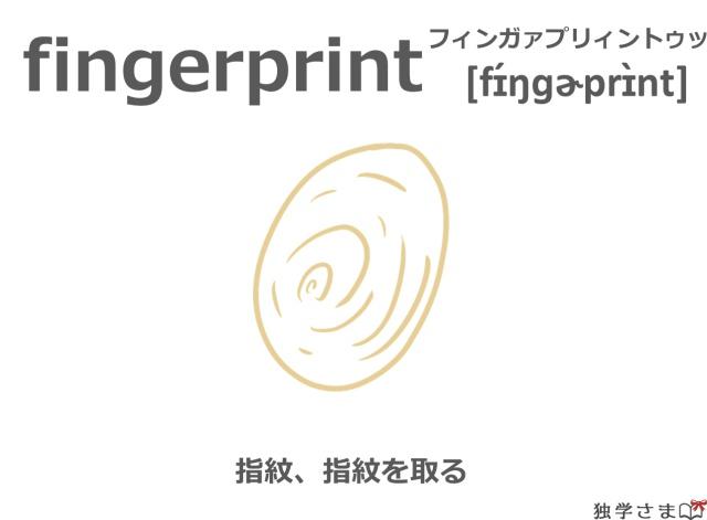 英単語『fingerprint』イラスト・意味・カタカナ