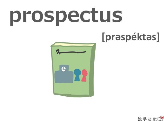 英単語『prospectus』イラスト