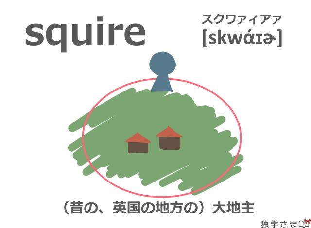 英単語『squire』イラスト・意味・カタカナ