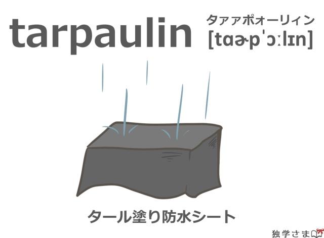 英単語『tarpaulin』イラスト・意味・カタカナ