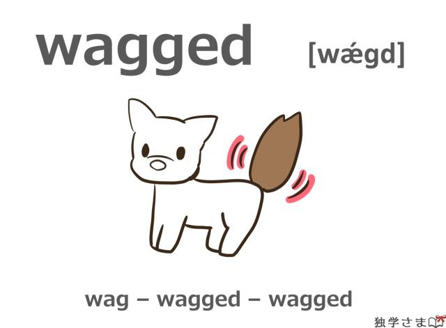 英単語『wagged(wag)』イラスト