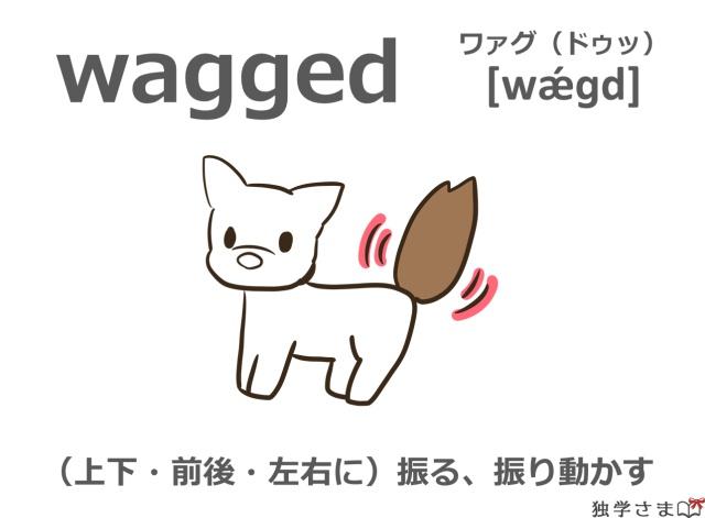 英単語『wagged(wag)』イラスト・意味・カタカナ