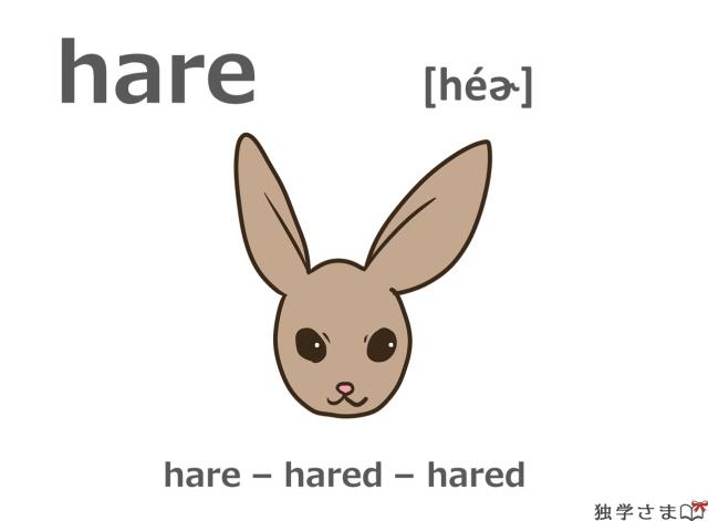 英単語『hare』イラスト