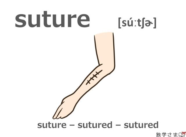 英単語『suture』イラスト