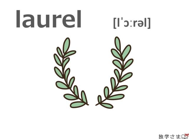 英単語『laurel』イラスト