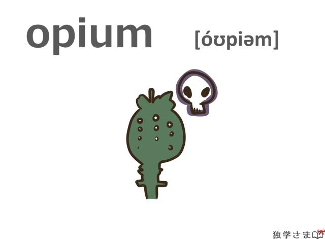 英単語『opium』イラスト