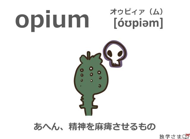 英単語『opium』イラスト・意味・カタカナ