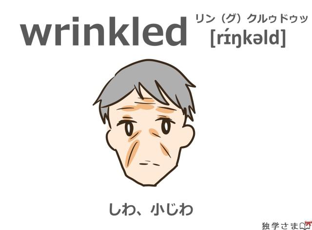英単語『wrinkled(wrinkle)』イラスト・意味・カタカナ